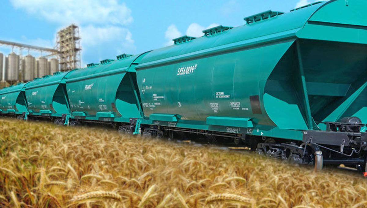 жд зерновоз перевозки