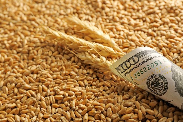 пшеница зерно экспорт импорт