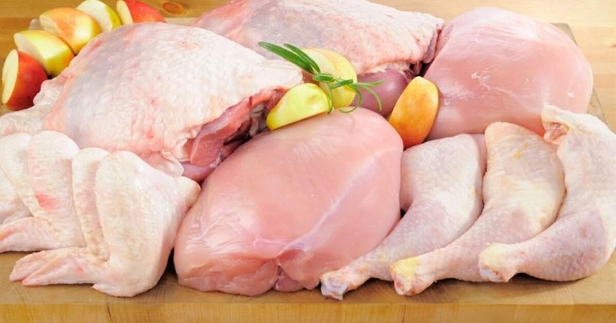 курятина курица мясо