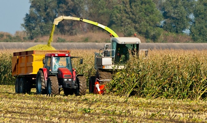 сбор урожая кукуруза