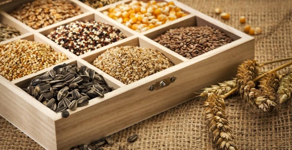 семена зерновые масличные