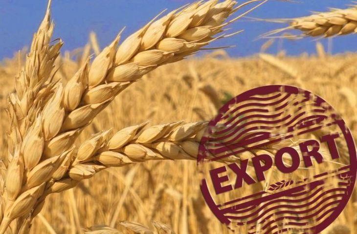 экспорт зерно
