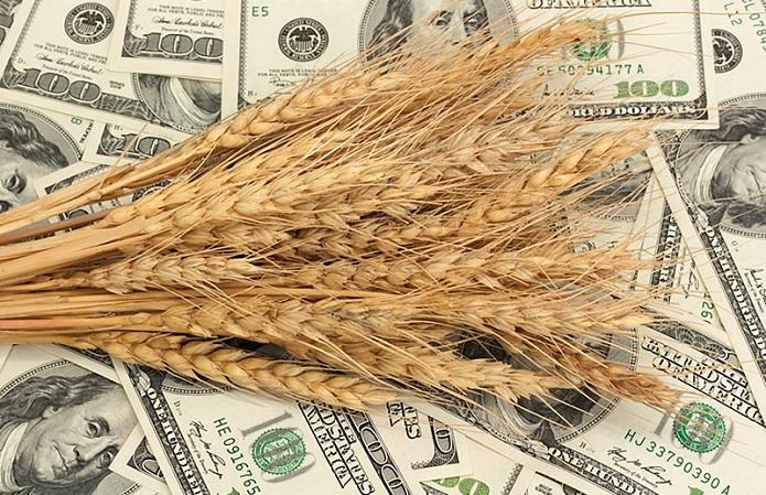 зерно деньги экономика экспорт