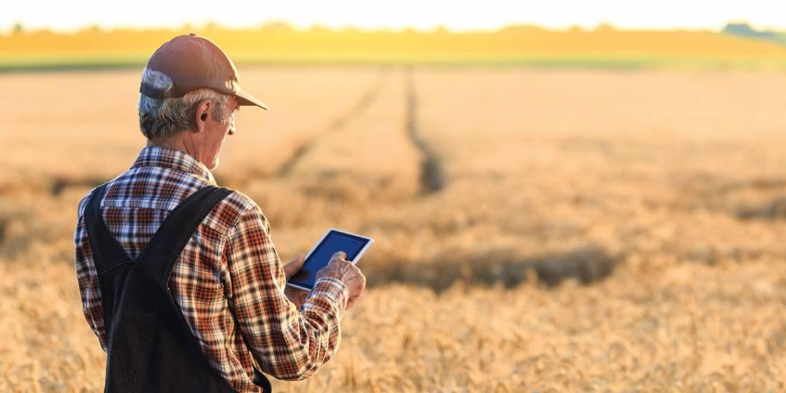 фермер ферма фермерское хозяйство