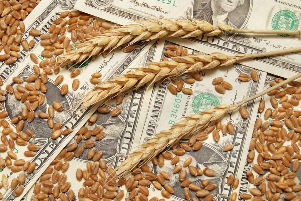 зерно экономика grain eonomy